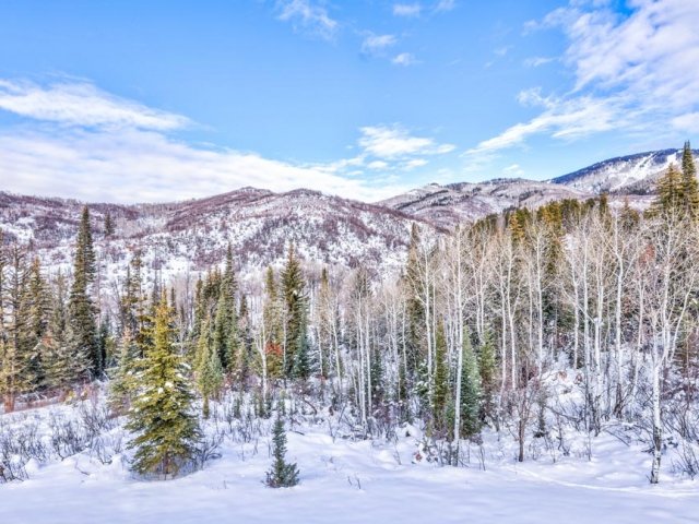 Alpine Mountain Ranch Property 36 640x480 c - Homesite #12: MOONLIGHT RUN -SOLD