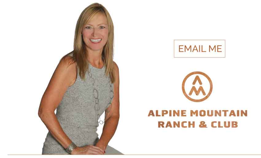 suzanne cta email 1 - Market Homes