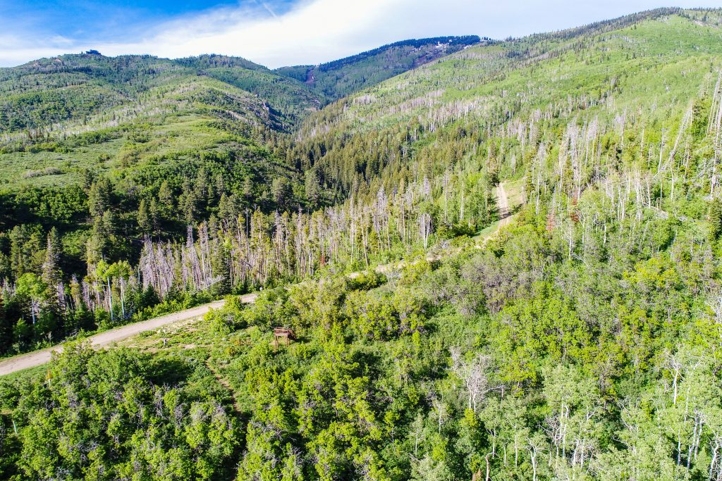 Alpine Mountain Ranch Club Lot 1 Drone Aerial 2 5 1024x683 - Homesite #1
