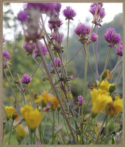 sideimage-flower2